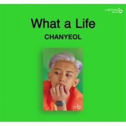 CHANYEOL 燦烈 (EXO) - CASHBEE...