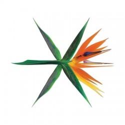 EXO - VOL.4 [THE WAR]...