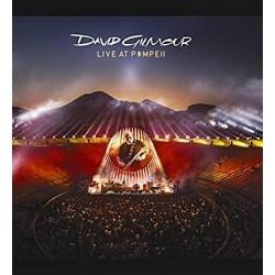 DAVID GILMOUR/LIVE AT...