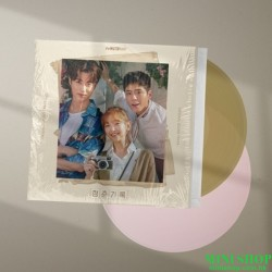 [黑膠]韓劇 青春紀錄 RECORD OF YOUTH...