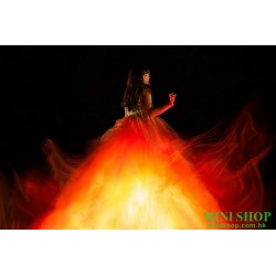 Aimer 6th album『Walpurgis』...