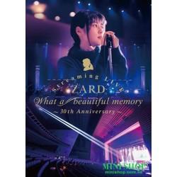 DVD ZARD Streaming LIVE...